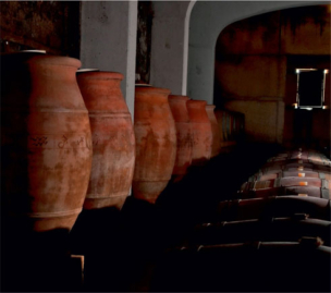 Вина в глиняных амфорах. Вина хозяйства Domaine Viret