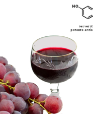 Содержащийся в красном вине антиоксидант смягчит течение COVID-19
