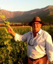 Мауро фон Зибенталь: внимание, в Чили вино есть!