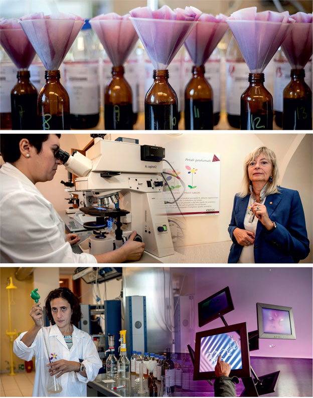 The Enosis Research Center: Where Wine Speaks